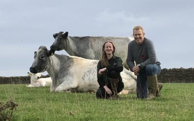 Adam Henson Helps Save Rare Breed Cattle