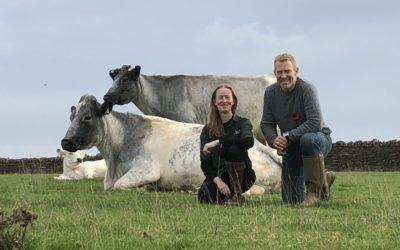 Adam Henson Helps Save Rare Breed Cattle