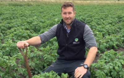 InVigor Perfromer yields 2.72 t/ha in 2020 and delivers financial results