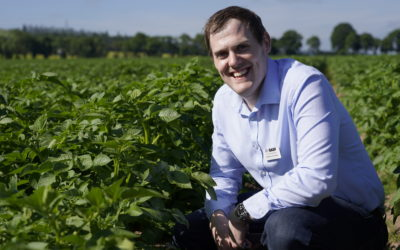 Perfecting Potatoes Together, a new podcast for agronomists and growers