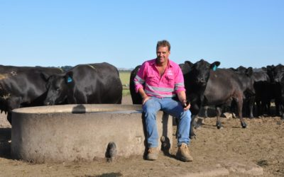 Breeding success: tailoring genetics to your market and environment