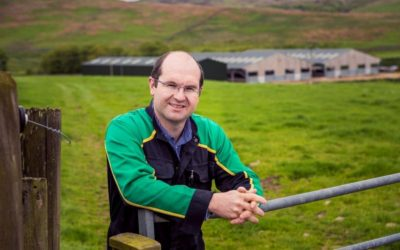 Superior sires improve productivity and profitability during RamCompare project