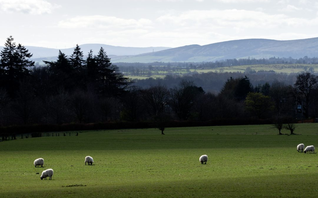 SRUC vision and investment focuses on the North East